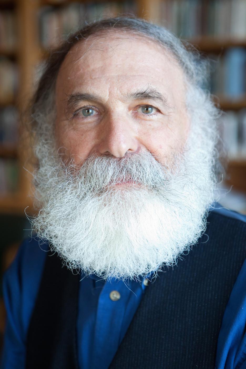 Hillel Schwartz