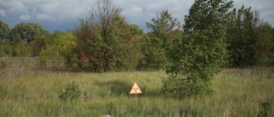 CHORNOBYL, UKRAINE - SEPTEMBER 29:  A Sign Warns Of Radiation Near The Site Of Kopachi Village Located Inside The Chernobyl Exclusion Zone On September 29, 2015 Near Chornobyl, Ukraine. Kopachi, A Village That Before 1986 Had A Population Of 1,114, Lies Only A Few Kilometers South Of The Former Chernobyl Nuclear Power Plant, Where In 1986 Workers Inadvertantly Caused Reactor Number Four To Explode, Creating The Worst Nuclear Accident In History. Radiation Fallout Was So High That Authorities Bulldozed And Buried All Of Kopachi's Structures Except For The Kindergarten. Today The Kopachi Site, Which Lies In The Inner Exclusion Zone Around Chernobyl Where Hot Spots Of Persistently High Levels Of Radiation Make The Area Uninhabitable For Thousands Of Years To Come, Is Still Contaminated With Plutonium, Cesium-137 And Strontium-90.  (Photo By Sean Gallup/Getty Images)