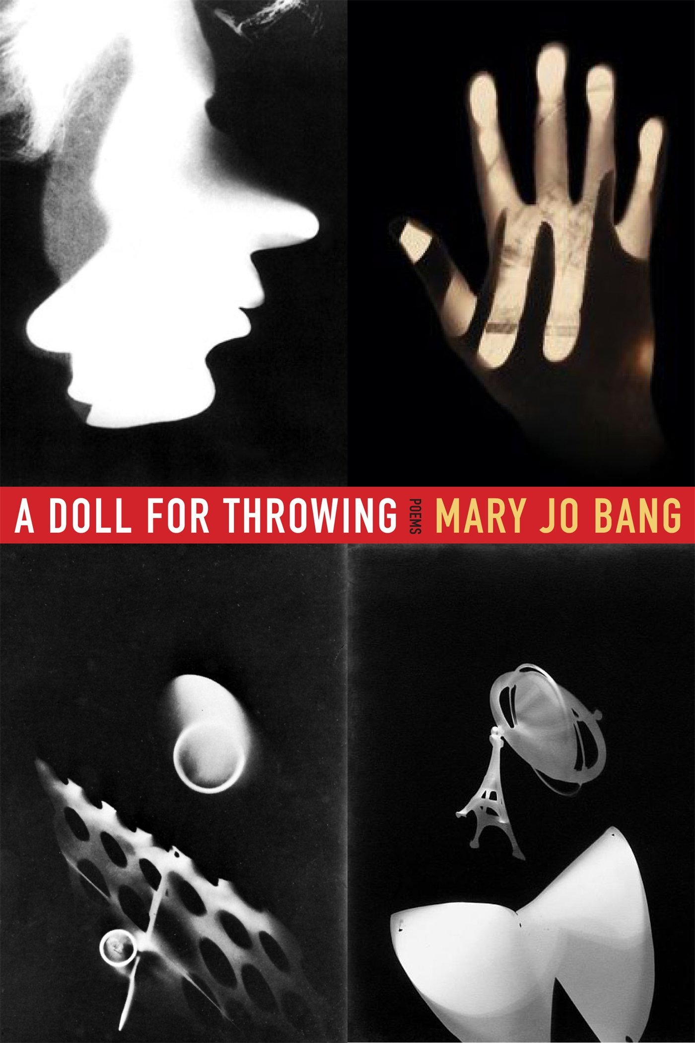 Book Cover Mary Jo Bang