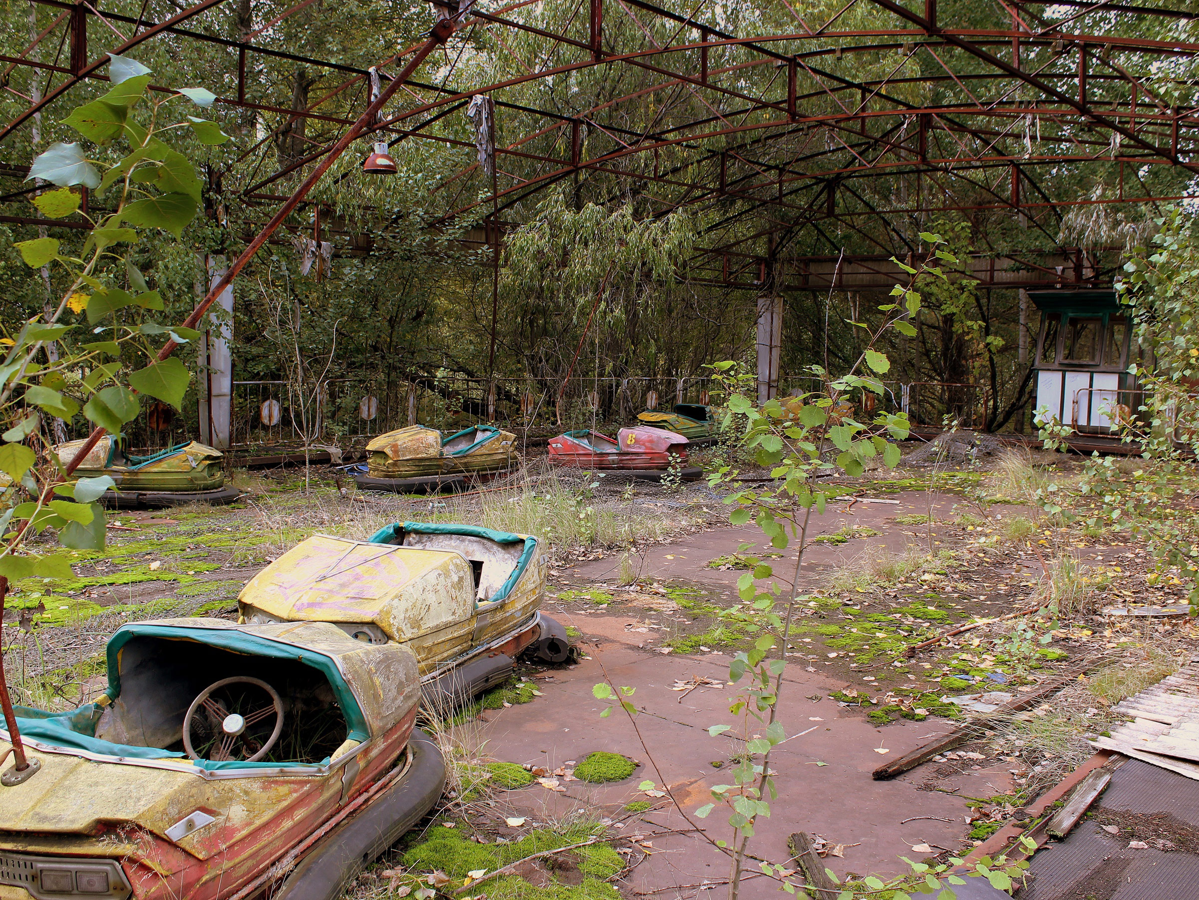 Life after the Chernobyl Disaster: Human Survival in Times of Ecological Crises