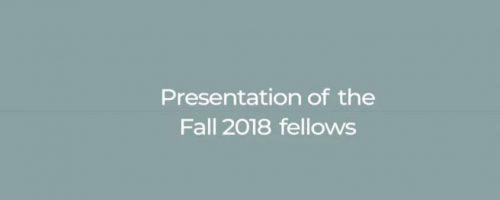The Fall 2018 Fellows Presentation