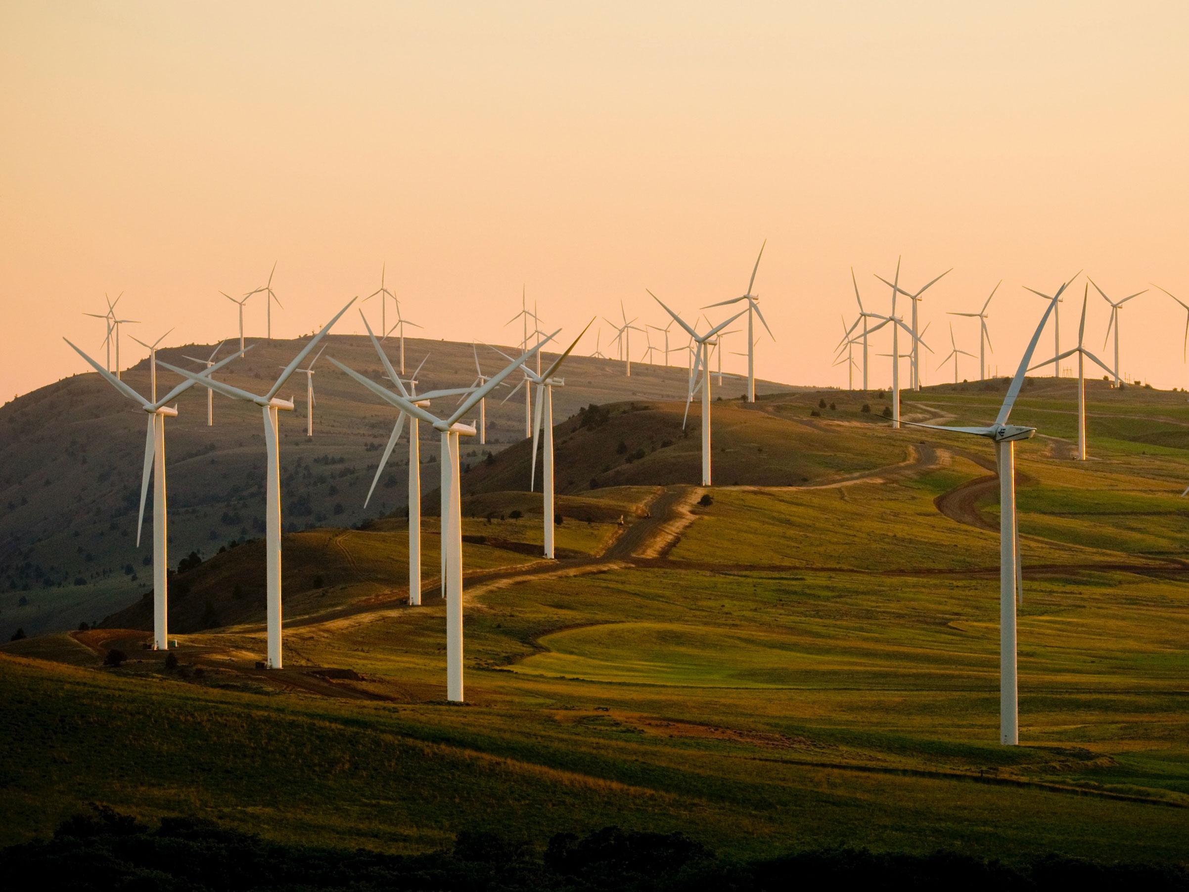 Unpacking Biden's Environmental Agenda – a Conversation with Todd Stern